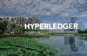 hyperledger_blogpost_dec2016_final