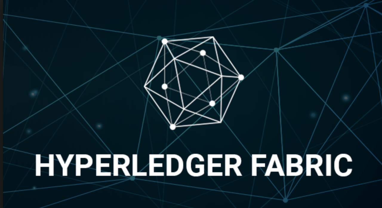 Page 14 – Hyperledger